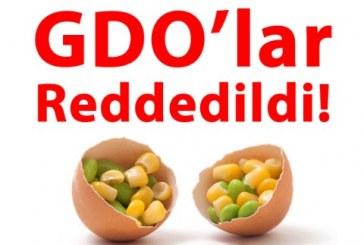 GreenPeace Yemezler GDO Kampanyası