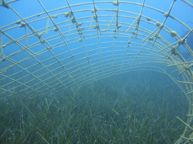 Marmaris deniz dibi tespitleri