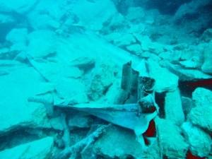 marmaris keçi adası deniz dibi moloz