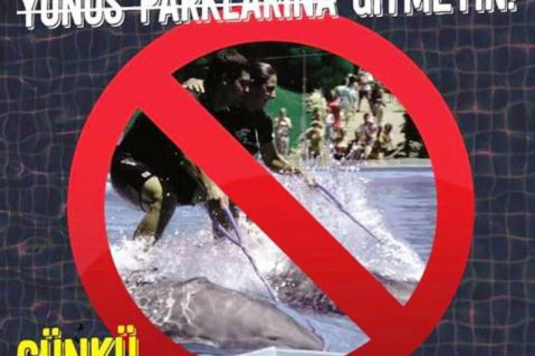 Yunus parklarına hayır