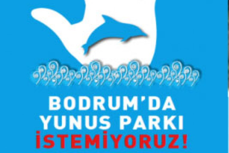 bodrumyunus